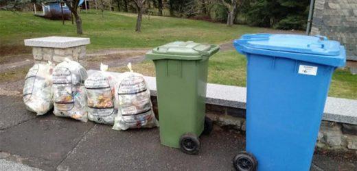 Kako se reciklira u Nemačkoj – iskustva jedne Beograđanke