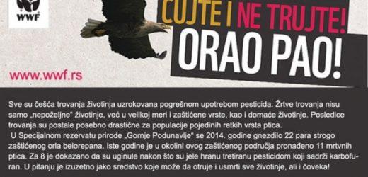 Šta povezuje vidre, rečne rakove, jazavce i beloglave supove sa Vladom Republike Srbije?