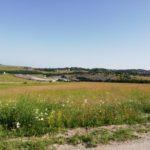 Ekološko očuvanje – prioritet opštine Čajetina