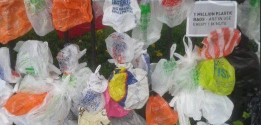 Od januara sledeće godine bez plastičnih kesa u Novom Sadu i Beogradu