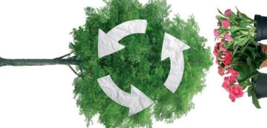 AKCIJA: Zamenite stari papir za sadnice