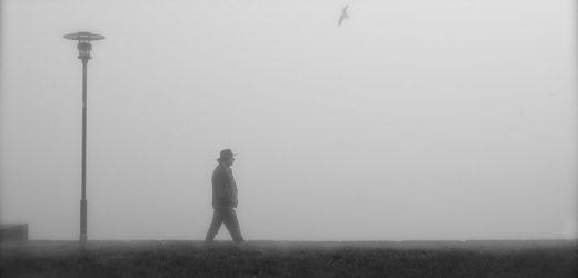 Problem zagađenosti vazduha treba da reše – lokalne samouprave?