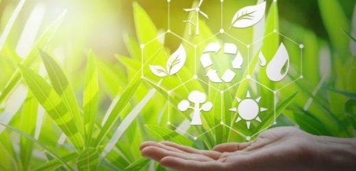 Plastična ambalaža idealan materijal za cirkularnu ekonomiju