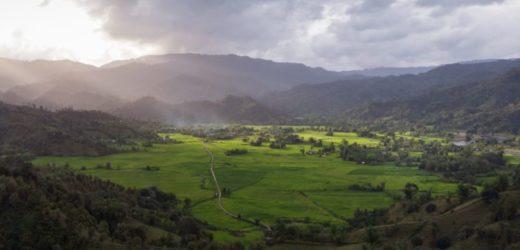 Pandemija- Novi poziv za zaštitu životne sredine