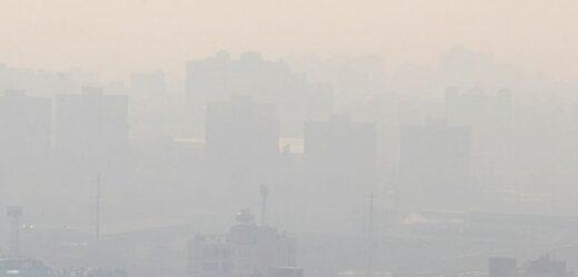 Zagađen vazduh skraćuje život, menja genetički kod i ugrožava buduće potomstvo