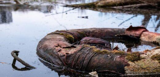 Vujović: Srbiji treba 350 postrojenja za preradu otpadnih voda